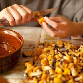 Międzybrodzkie muszelki z grzybami i kur